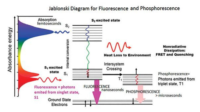 Laser induced fluorescence experiment